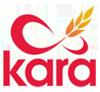 logo_kara_100